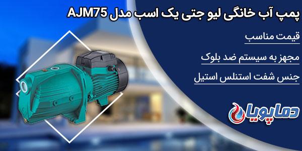 قیمت پمپ آب جتی لیو AJM150